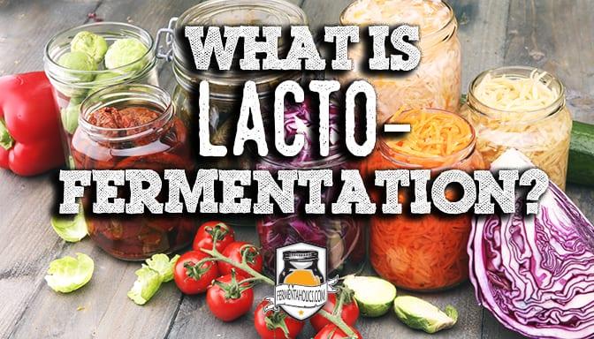 What is Lacto Fermentation