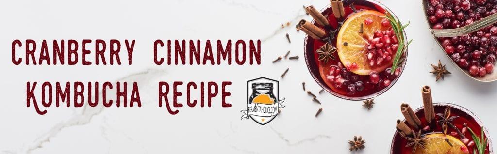 Cinnamon Cranberry Kombucha Recipe