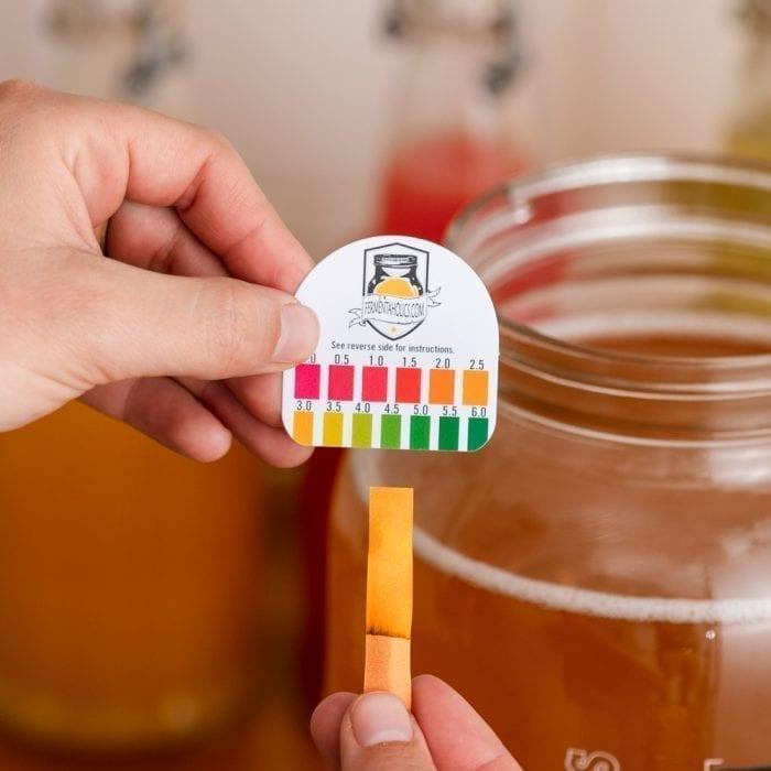 Kombucha pH Test Strips