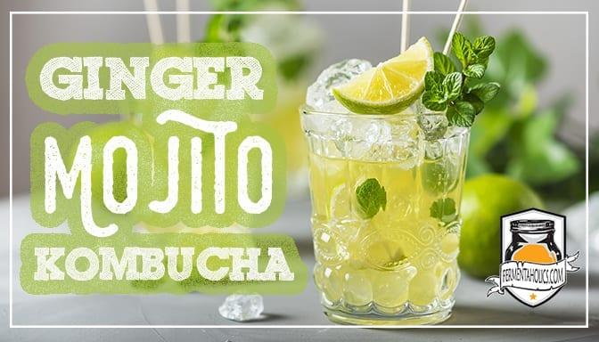 Ginger Lime Mint Mojito Kombucha Recipe