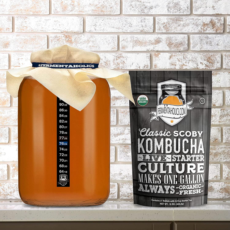 plain gallon glass kombucha jar