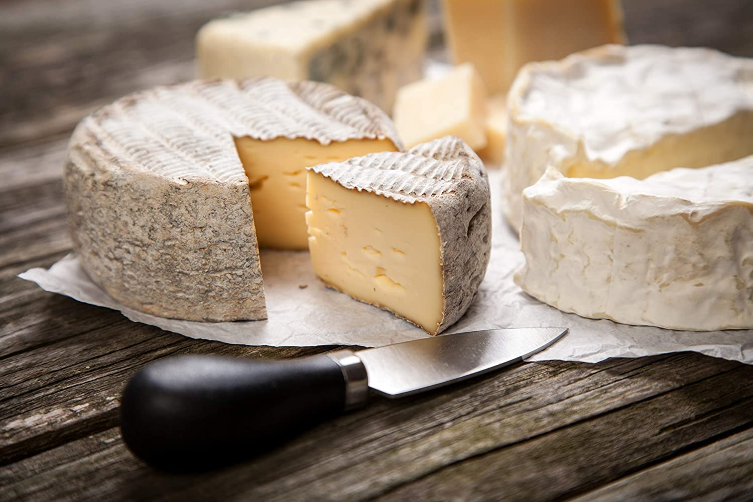 microbial rennet for cheese making
