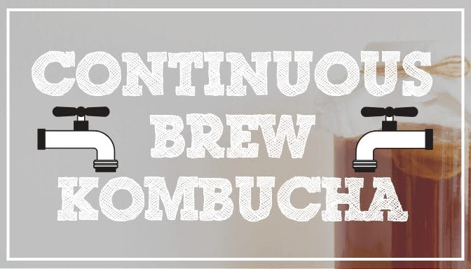 Pros and Cons of Continuous Kombucha Brewing