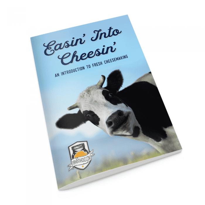 Easin' Into Cheesin' Recipe Book