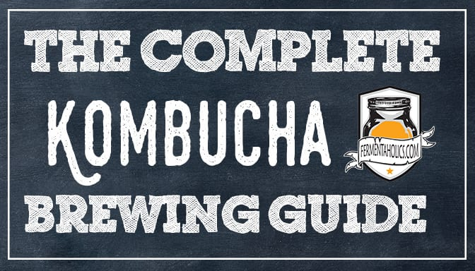 The Complete Guide to Brewing Kombucha