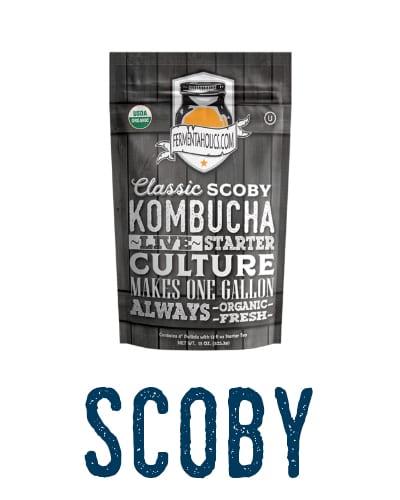 Kombucha Ingredients SCOBY