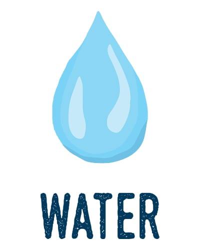 Kombucha Ingredients Water