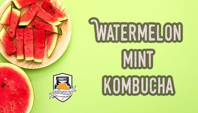 Watermelon Kombucha Recipes