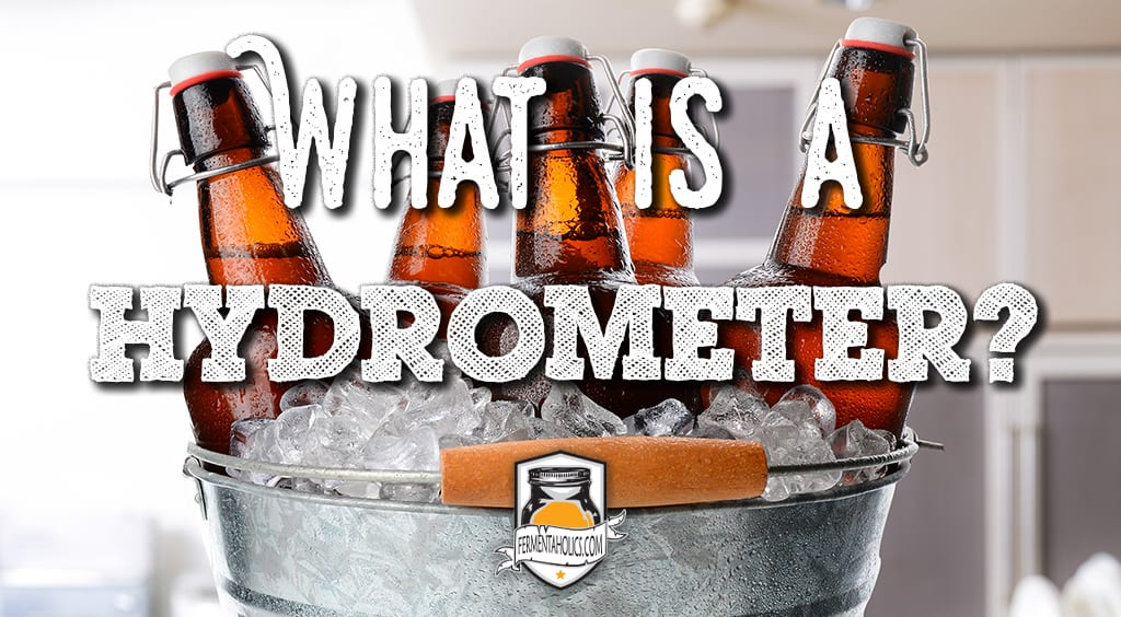 what is a hydrometer