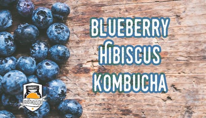 Blueberry Hibiscus Kombucha