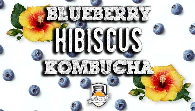 Blueberry Hibiscus Kombucha Recipe