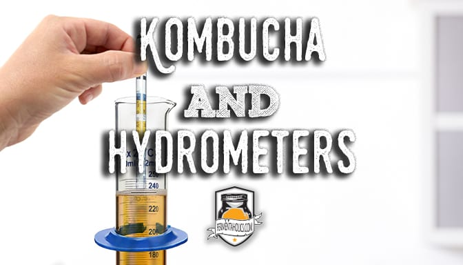 kombucha and hyrometer
