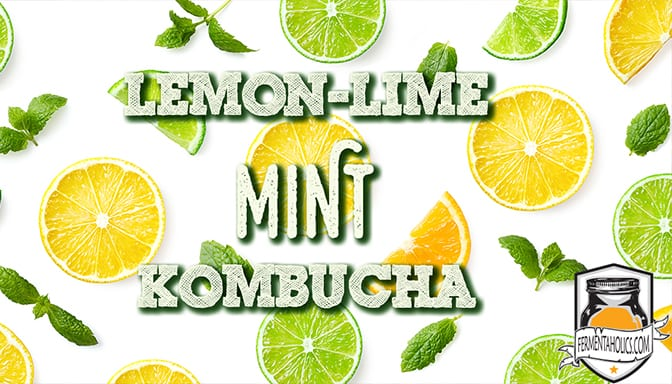 lemon lime mint kombucha recipe