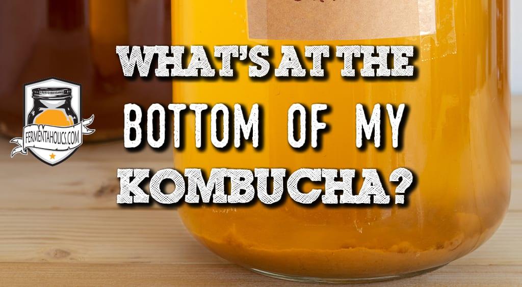 Bottom of my Kombucha
