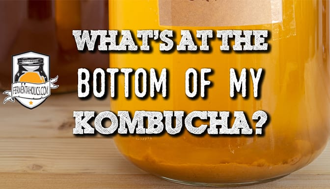 what is the brown stuff at the bottom of my kombucha