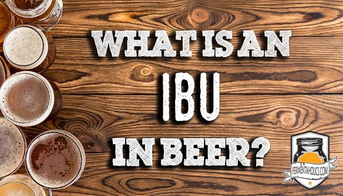 what is an ibu in beer