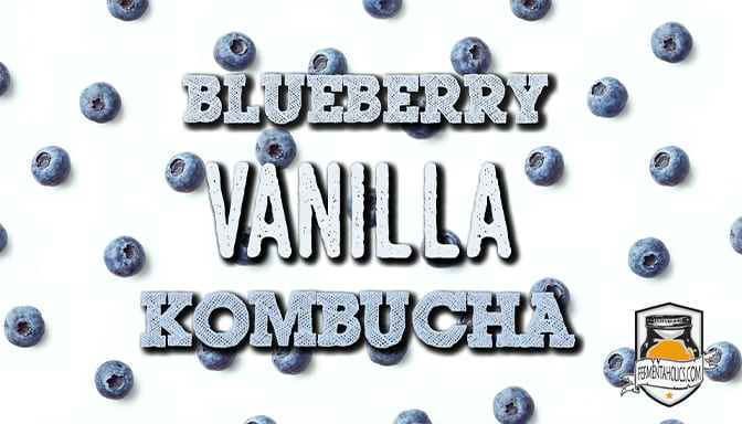 feature blueberry vanilla