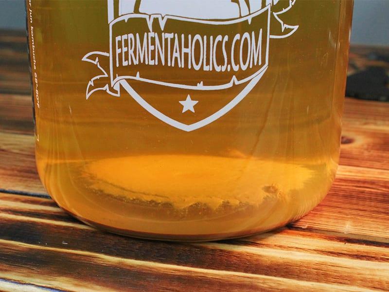 Yeast on bottom of kombucha jar