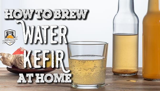 DIY Water kefir