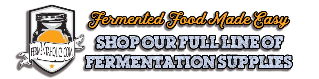 fermented food Banner