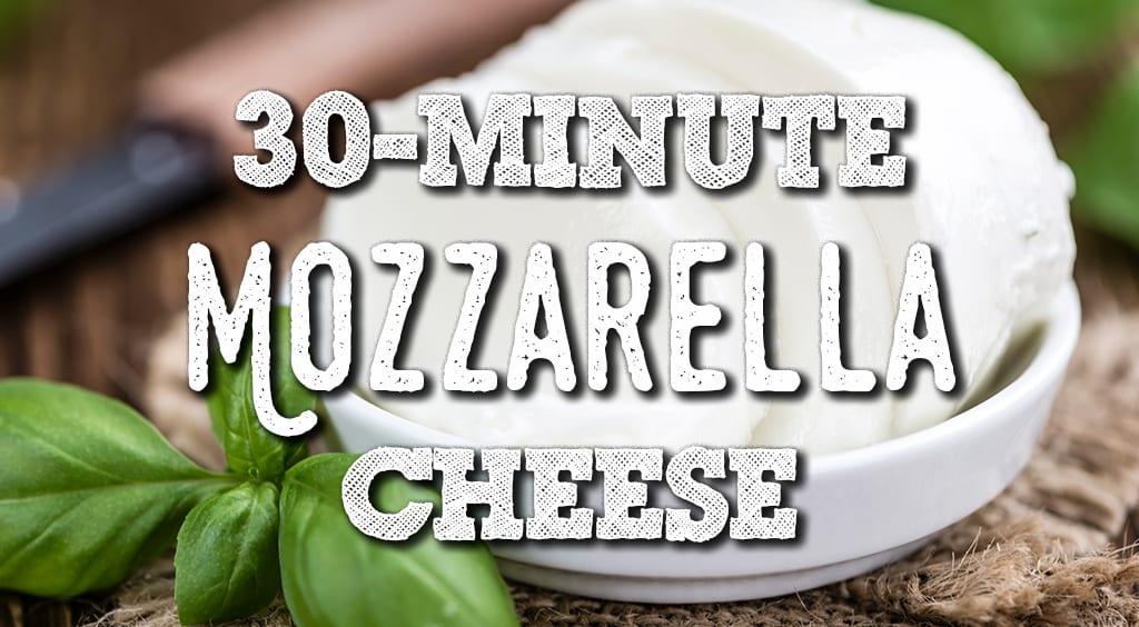 How to make mozzarella cheese