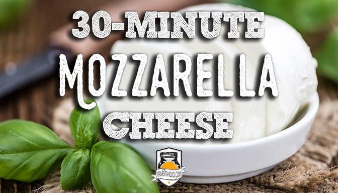 making mozzarella cheese in 30 minutes