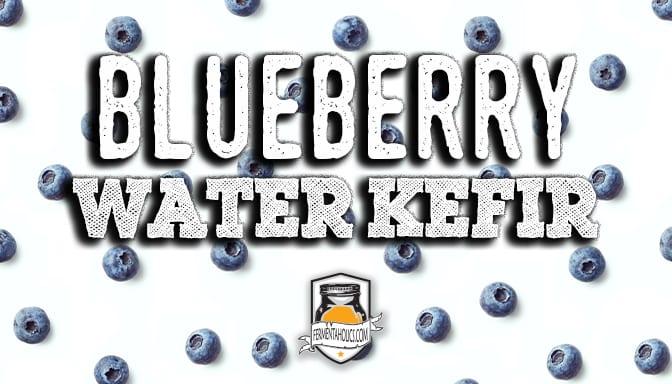 Blueberry Water Kefir