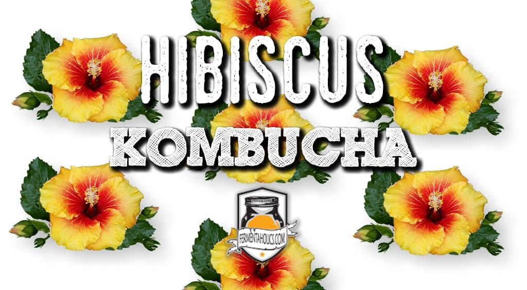 hibiscus kombucha