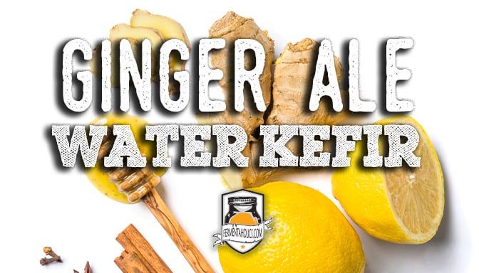 ginger ale water kefir